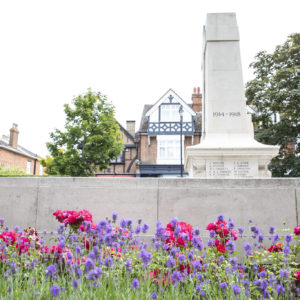 Judging days for Cranleigh in Bloom
