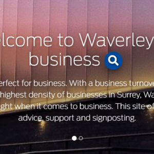 New Business Waverley website