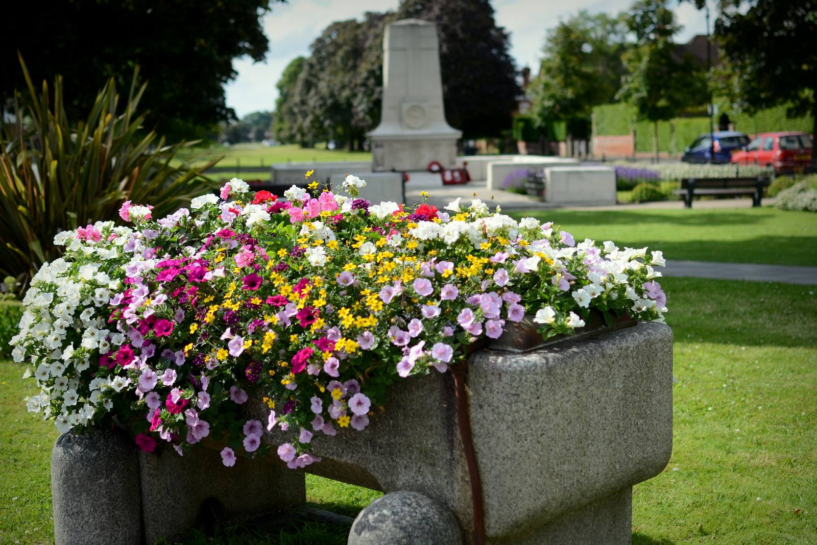 It's another GOLD for Cranleigh in Bloom!